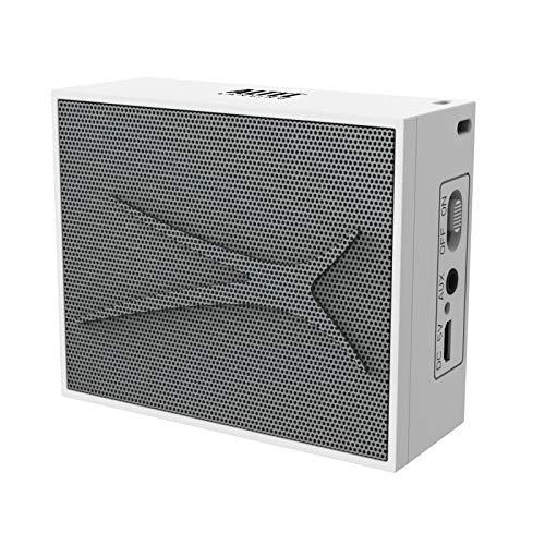 Altec Lansing Pocket - Altavoz PC