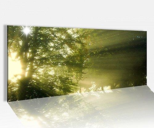 Acrylglasbild 100x40cm Sonne Wald Bäume grün Sonnenstrahlen Acrylbild Glasbild Acrylglas Acrylglasbilder 14A1570, Acrylglas Größe1:100cmx40cm
