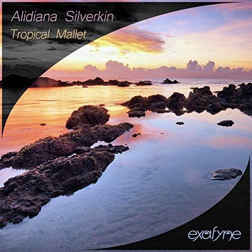Alidiana Silverkin