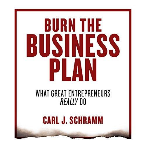 Burn the Business Plan audiobook cover art