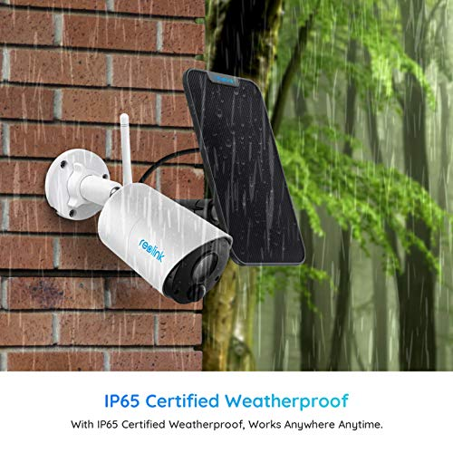 Outdoor Security Camera System Wireless, Solar Battery Powered, 1080p Wirefree Waterproof 2-Way Audio Night Vision w/ PIR Motion Sensor, Support Alexa/Google Assistant/Local SD, Argus Eco+Solar Panel