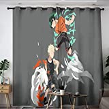 Elliot Dorothy My Hero Academia Cartoon Comic Anime Thermal Insulated Darkening Curtains Curtains for Living Room Window Curtain Drape for Kids Room,Baby Room W42 x L72