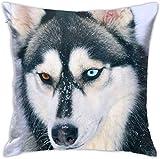 LOVE GIRL Ojos impares Siberian Husky Decorativo Square Throw Pillow Fundas Fundas de colchón para el hogar Sofá Dormitorio Oficina Coche 18 X 18 Pulgadas 45 X 45 cm