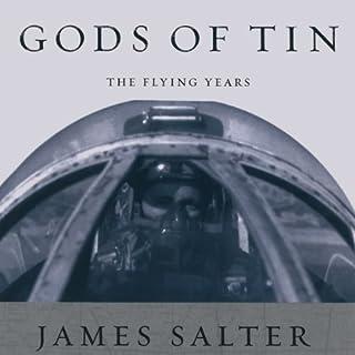 Gods of Tin audiobook cover art