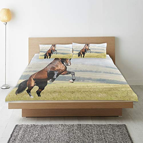 MEJX Parure de lit,Bay Akhal-Teke Horse Stallion élevant Le Champ de mammifères Nobles à l'extérieur,1 Housse de Couette 200x200 + 2 Taies d'Oreillers