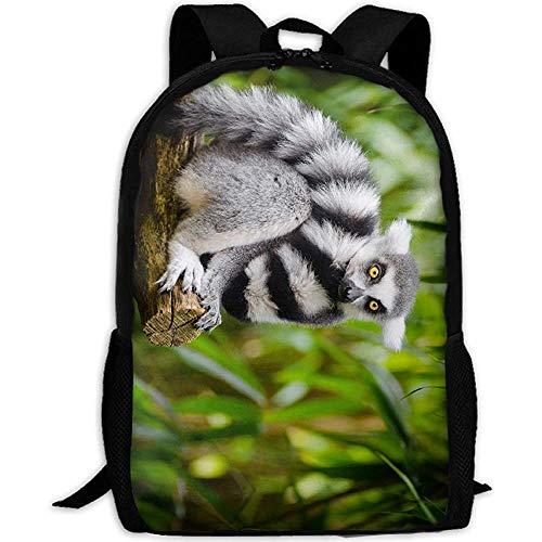 G.H.Y Lemur On The Tree Mochila de Viaje para Adultos Mochila Informal Escolar Oxford Bolsa para computadora portátil al Aire Libre Universidad