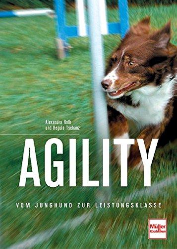 Agility: Vom Junghund zur Leistungsklasse