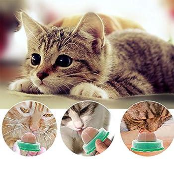 Jiaji Collations Saines pour Chat Bonbons Au Sucre à Lherbe à Chat Balle à Coller Naturelle pour Chat pour Lécher Le Chat Friandises Jouets
