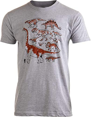 Dinosaur Species | Dino Fan Party Costume T-Rex Raptor Shirt Men Women T-Shirt-(Grey,S)
