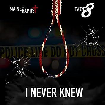 I Never Knew (feat. Twenty8)