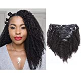 Afro Kinky Curly Clip in Human Remy Hair Extensions Brazilian Curly Clips Hair Extensions 4B 4C 8A Virgin Thick Natural Black Color Clip on For Black Women 10-22 inch (20 inch, AC #1B)