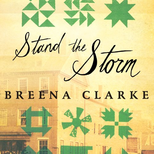 Stand the Storm audiobook cover art
