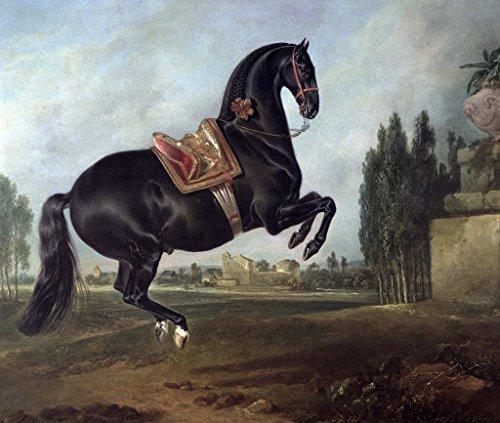Kunst für Alle Impresión artística/Póster: Johann Georg Hamilton A Black Horse Performing The Courbette - Impresión, Foto, póster artístico, 100x85 cm