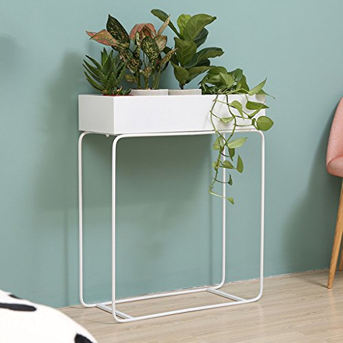 FL- Europe du Nord Simple Intérieur Fleur Stand Salon Balcon Ground Pot Rack Fer Art Scindapsus Bonsaï Étagère Plantes Affichage Rack (Couleur : Blanc)