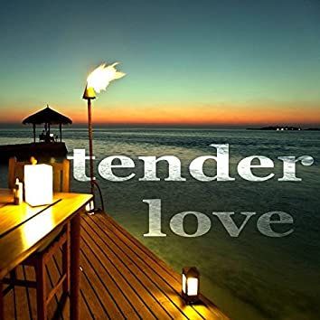 Tender Love (Vocal House Music)