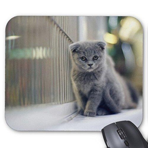 Goobull Gattino da solo nell' angolo tappetino mouse rettangolo antiscivolo tappetino per il mouse in gomma Design Gaming Mouse pad Style