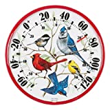 AcuRite 01581 12.5-Inch Wall Thermometer, Songbirds,Multicolor