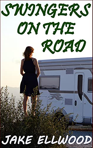 Swingers On The Road: A Hedonistic RV Adventure (English Edition)