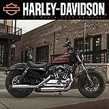 Harley-Davidson 2020 Wall Cale...