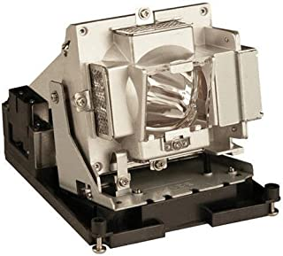 Optoma BL-FS300C Replacement Lamp for Optoma TH1060P DLP Projector - 300 W Projector Lamp - P-VIP - 3000 Hour Standard, 20...