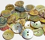 Botiboton SL Bottoni in Madreperla Naturale per Camice- 12, 15, 18, 20 e 25 mm - Prodotto e spedito dalla Spagna (12 mm)