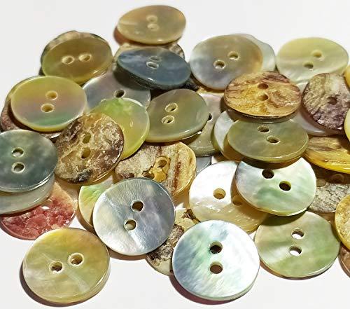 50 Botones Nacar Concha Natural (12 mm) - Accesorio de Costura - Fabricado y Enviado desde ESPAÑA -