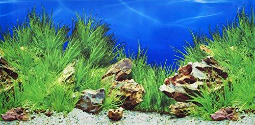 Póster para fondo de acuario de Pistachio Pet, dedoble cara, 45x 100cm