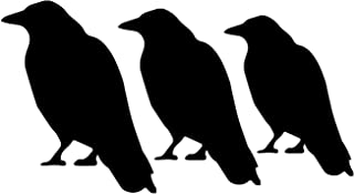 Halloween Decorations - Black Crows - Halloween Decor - Fall Decor Vinyl Wall Decals.