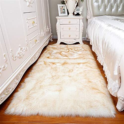 aspiradora limpia alfombras fabricante WSZMD
