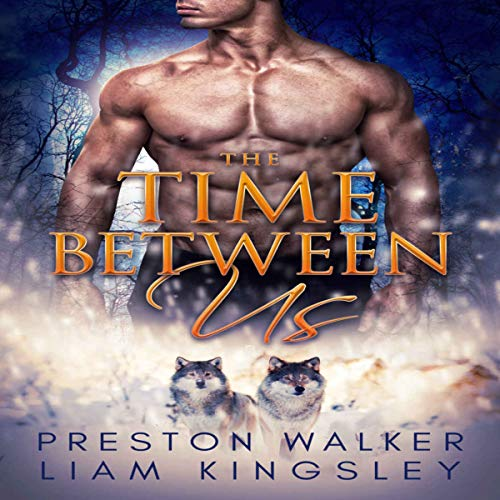 The Time Between Us: A Second Chance Protector Romance audiobook cover art