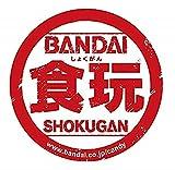 BANDAI 装動 仮面ライダーセイバー Book6 (12個入) 食玩・ガム (仮面ライダーセイバー)