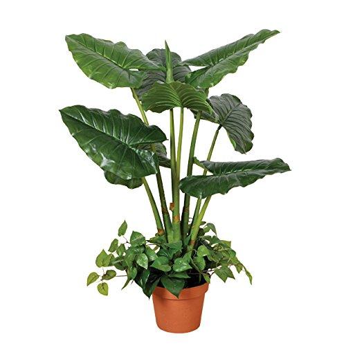 Catral Allemagne Décoration, Plante Taro 100 cm, Vert, 90 x 20 x 20 cm, 74010015