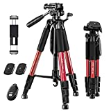 """JOILCAN 65"""" Camera Tripod, Aluminum Lightweight Phone/Tablet Stand 11 lbs Load with Univ..."""