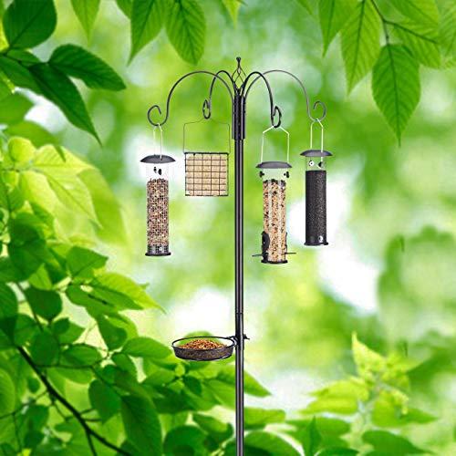 Best multiple bird feeder station