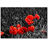 LYQSCL Leinwanddrucke,Moderne Roter Mohn Blumen Pflanzen