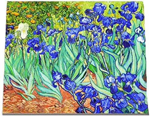 Wdsjxd Pintura por números DIY pintura al óleo Van Gogh Iris flores impresión lienzo arte pared decoración del hogar 40 x 50 cm