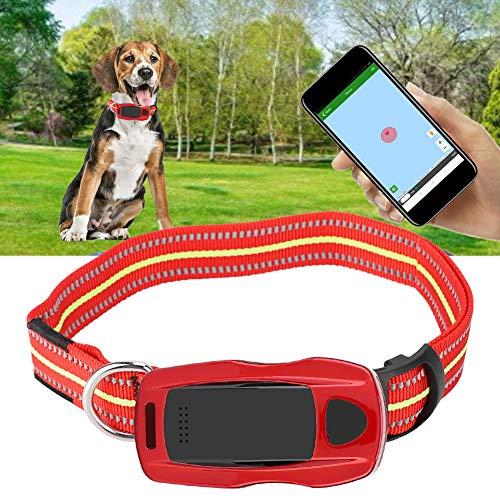 BTIHCEUOT Echtzeit GPS/GSM Tracker-System für Katzen Hunde, wasserdichtes Mini-Haustier-GPS-Kragen-Verfolger-Katzen-Hundefinder-Verzeichnis-¨¹berwachungssystem(rot)