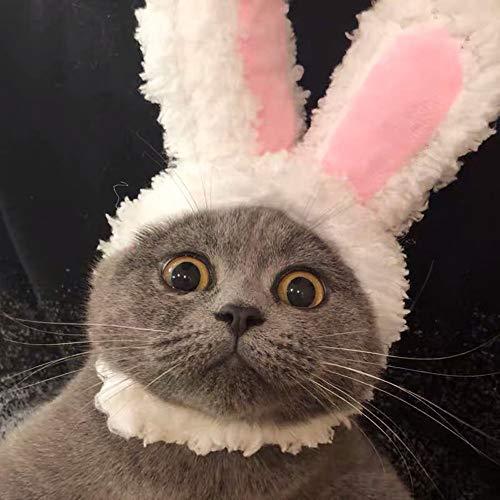 Hundewindeln Latzhose Haustier Katze verkleiden sich Ostern Kostüm lustig niedlichen Stil Haustier Headwear einstellbar Hase Kostüm Welpen...