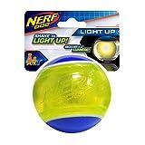 Nerf Dog Blaze Tennisball mit LED-Beleuchtung, 8,4 cm
