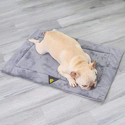Cama de perro lavable para gatos para perros medianos y grandes, con parte inferior antideslizante para camas para mascotas, cojín de sofá