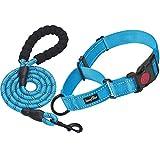 Haapaw 2 Packs Martingale Dog Collar
