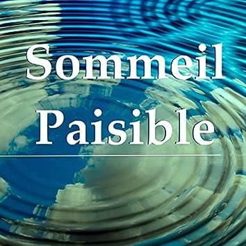 Sommeil Paisible: Musique Zen Nature pour Méditation du Jour, Sons de la Nature pour Méditation Pleine Consciense