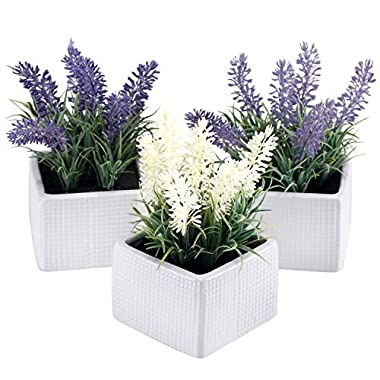 Set of 3 Assorted Color Artificial Lavender Flower Plants in White Textured Ceramic Pots