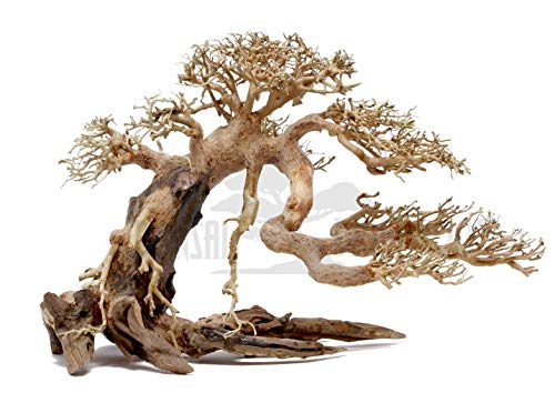 Bonsai Driftwood Aquarium Tree AMX (8 Inch Height) Natural, Handcrafted Fish Tank Decoration | Helps Balance Water pH Levels, Stabilizes Environments | Easy to Install
