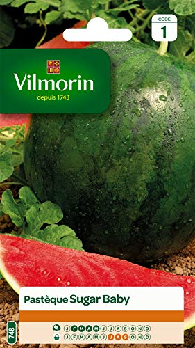 Vilmorin - Pastèque Sugar Baby - Excellente qualité gustative - belles pastèques rondes - chair rouge - sucrée et très rafraîchissante