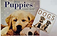 2016 壁掛けカレンダー 12ヶ月 動物 (子犬犬)