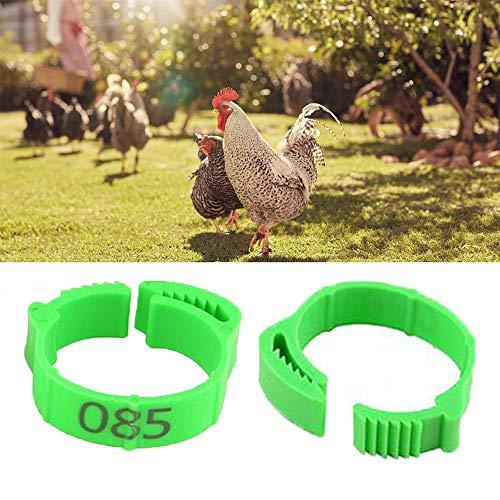 SIQDAK 100 anillos para patas de pollo, bandas ajustables de aves de corral, anillos de plástico numerados 001-100 para pollos, patos, ganso, gallinas y palomas (verde)