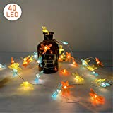 40 LED Decorative String Lights Battery Operated 8 Modes with Remote Control for Wedding, Party, Festival, Indoor, Outdoor (Dragonfly)