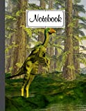 """Notebook: Composition Notebook Dilong Dinosaurs- College Ruled 120 Pages - Large 8.5"""" x 11"""" By Simone Bach"""