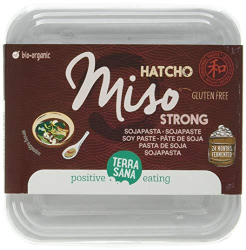 Terrasana Hatcho Miso Strong Pasta De Soja (Sin Pasteurizar) 300 G 300 ml